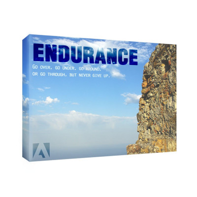 Endurance 11x14 Personalized Inspirational Wall Canvas