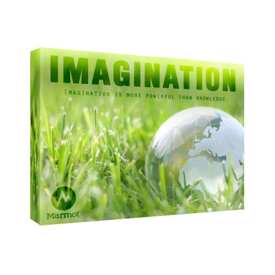 Imagination 11x14 Personalized Inspirational Wall Canvas
